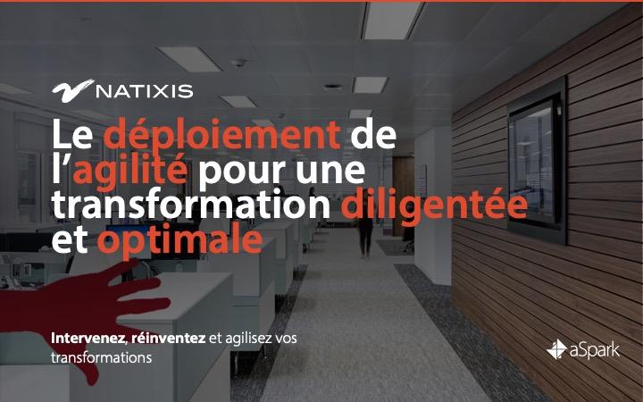 Natixis | Déploiement de l'agilité à l'échelle- Références clients aSpark Consulting - Natixis | Le déploiement de l'agilité pour une transformation diligentée et optimale.